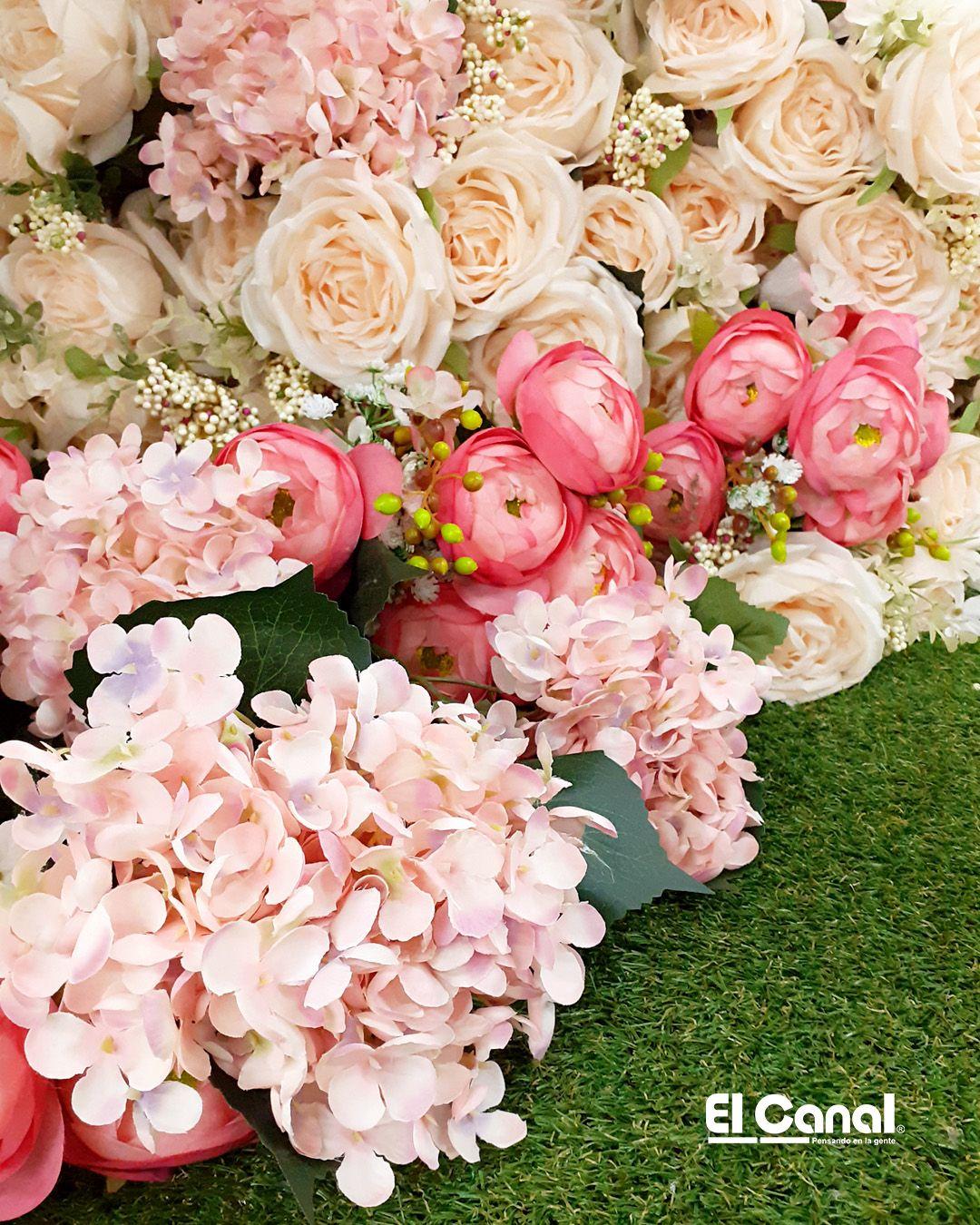 Cuarto Lleno De Flores