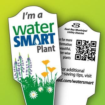 Problem Solving Labeling East Bay Munil Utility District Nursery Watersmart Plant Tags