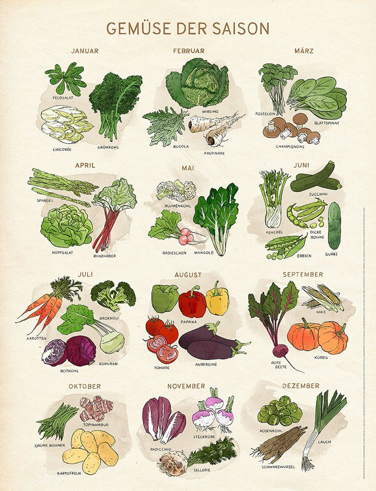 Gemüse der Saison – Poster für regionales Einkaufen von Obst und Gemüse