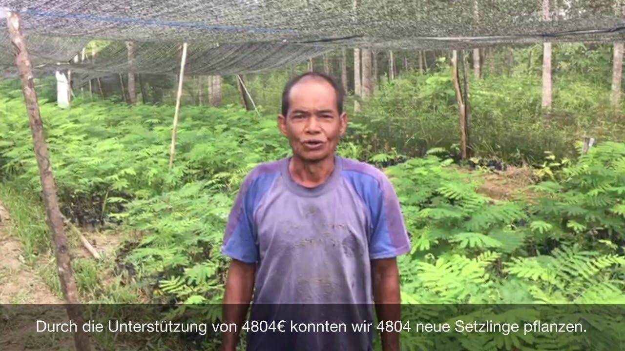 Thanks to ViscoTec YouTube Setzlinge, Pflanzen, Borneo