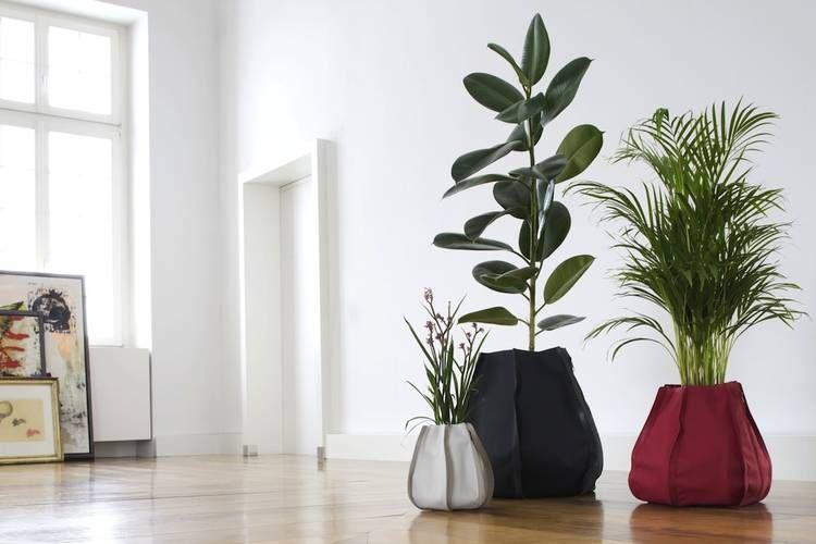 Piante Da Appartamento Design.Vasi Design Per Piante Da Interno Urban Garden Arredare Con