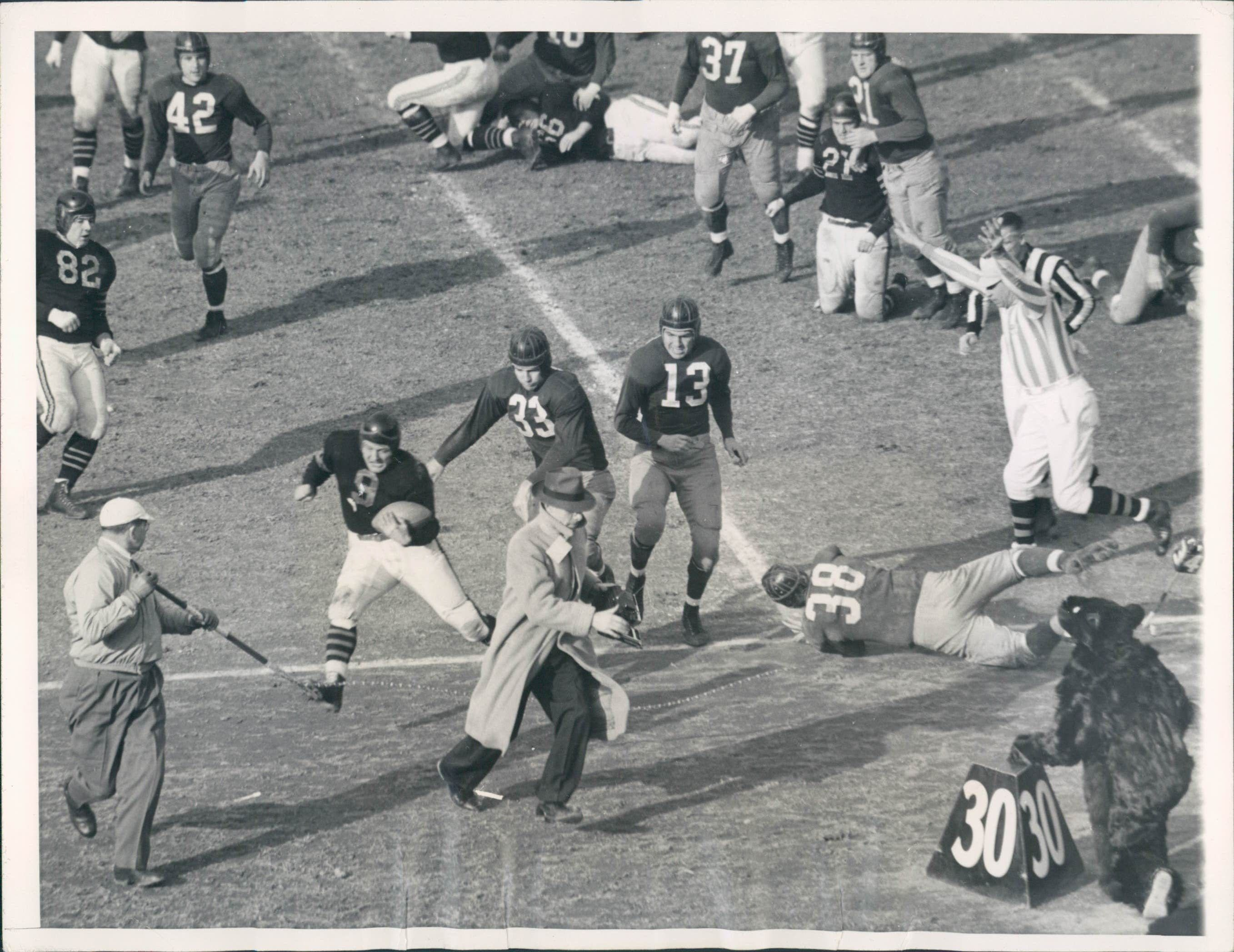 b0501036 Big Bill Osmanski, Chicago Bear Fullback, drove out of bounds on this play  and sent a cameraman, lineman and the team's mascot scampering. Redskins,  Sammy ...