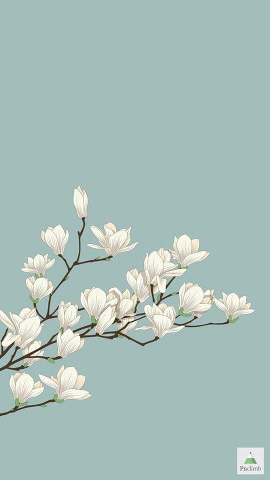 White flowers branch on light blue background