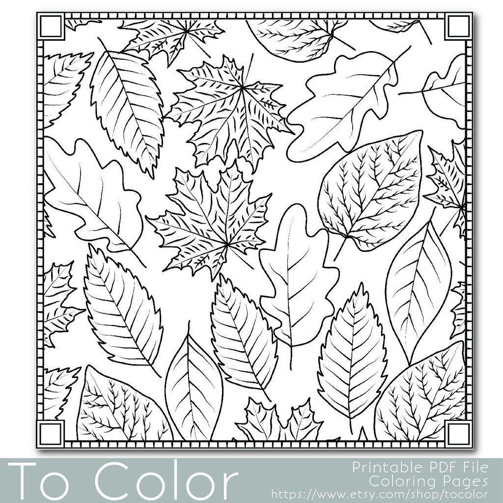 Pin On Printable Weather Coloring Pages
