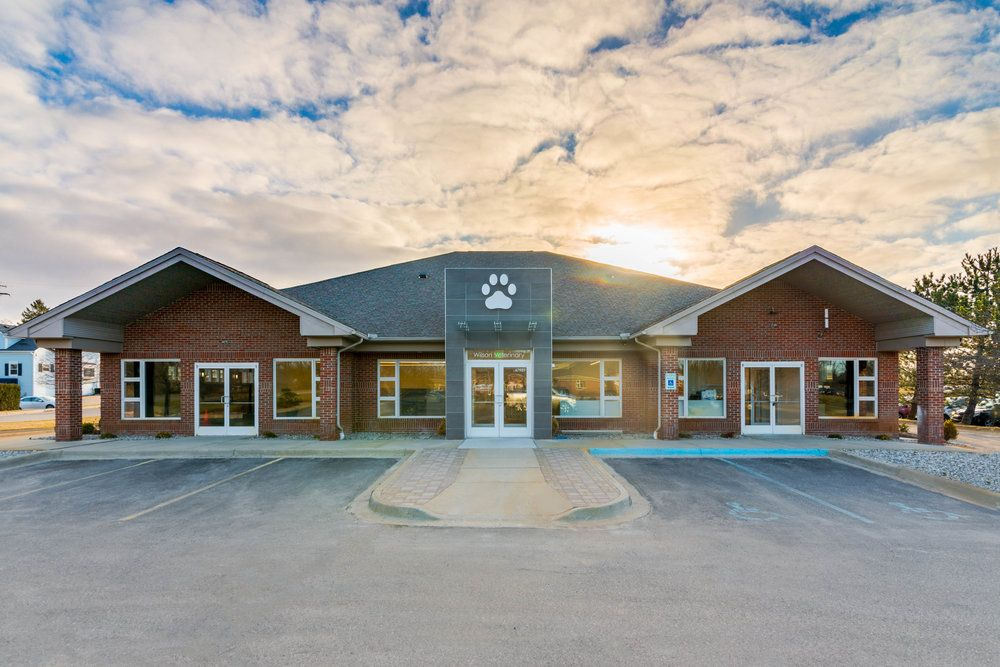 17+ North durham animal hospital images