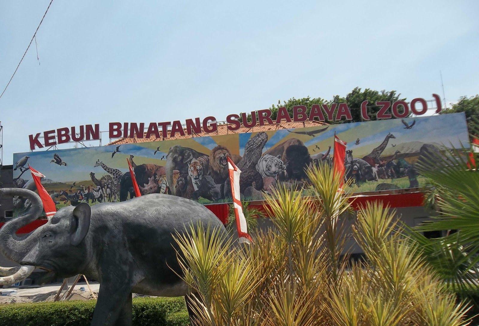 Tempat Rekreasi Kebun Binatang Surabaya