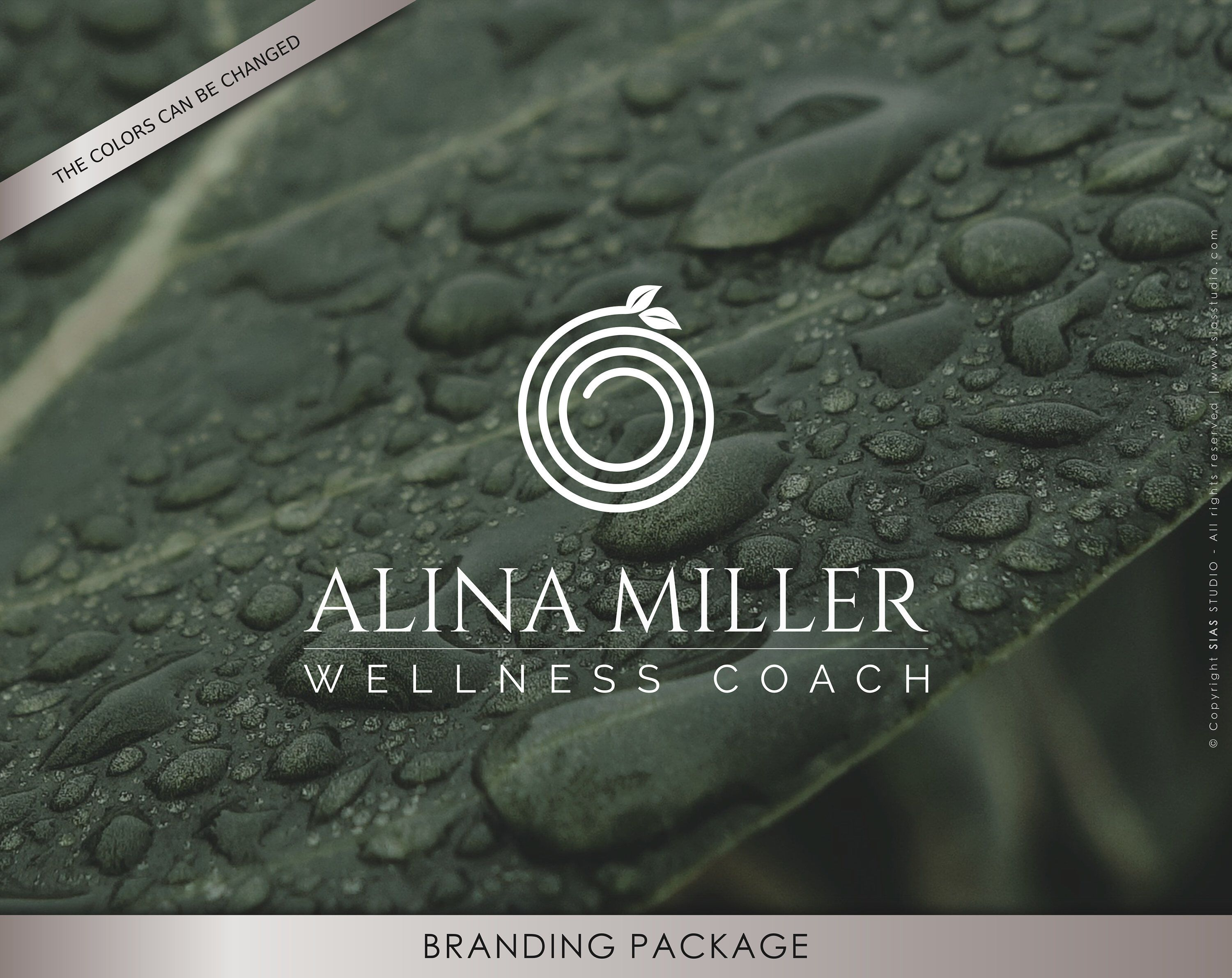 Premade branding package, Ultra stylish logo design, Professional brand identity, Customizable logo, Wellness logo design, Branding package
