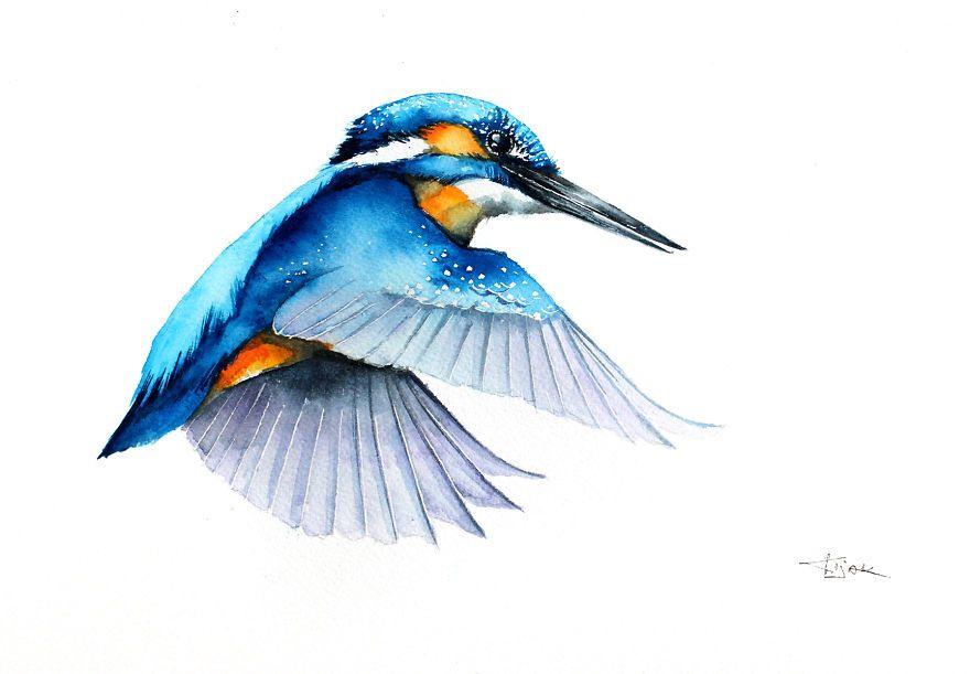 Les Delicieuse Aquarelles D Oiseaux En Vol De Karolina Kijak