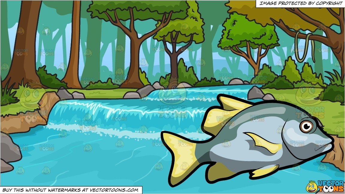 Clipart Cartoon A Virginalis Blotch Fish And River Running Through Forest Background