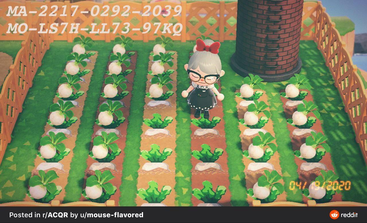 Acnh Turnip Garden Qr Animal Crossing Game New Animal Crossing Animal Crossing