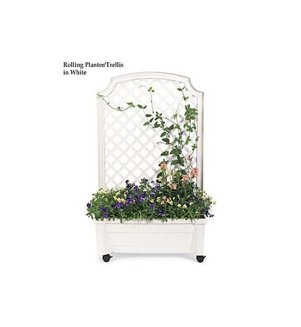 Planter With Trellis And Self Watering Reservoir Garden Ideas