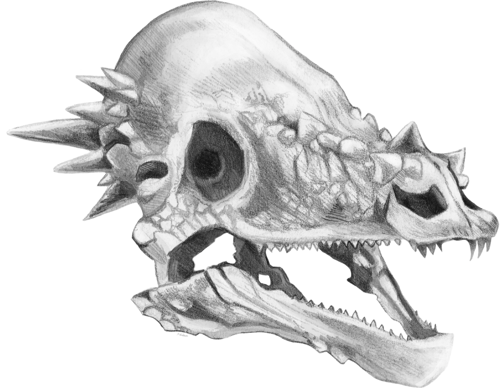Dinosaur Skeleton Clipart Google Search Dinosaur Silhouette Skull Silhouette Silhouette Illustration