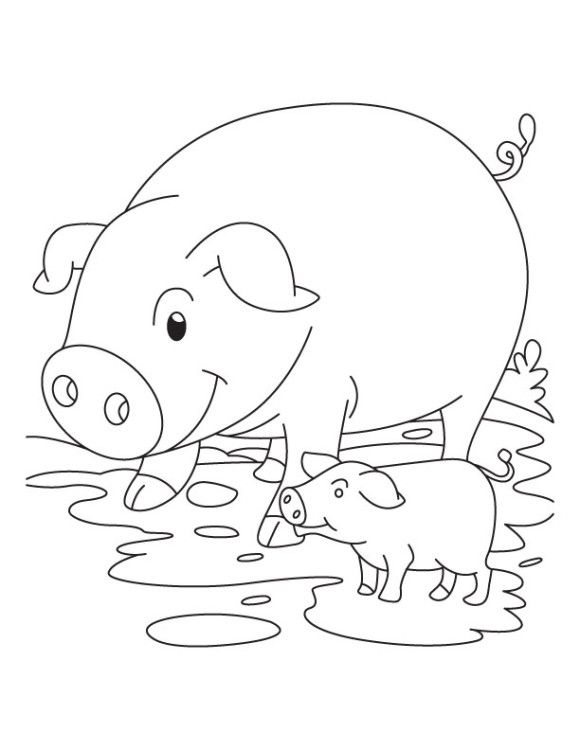 cute pig and piglet coloring pages - Coloring Pages Pigs Piglets