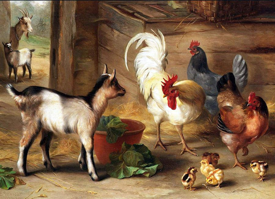 Vintage Art Baby Goats In Barn Rooster And Chickens By