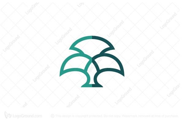 Exclusive Logo 206610, Oak Tree Logo Geometrical Logo in