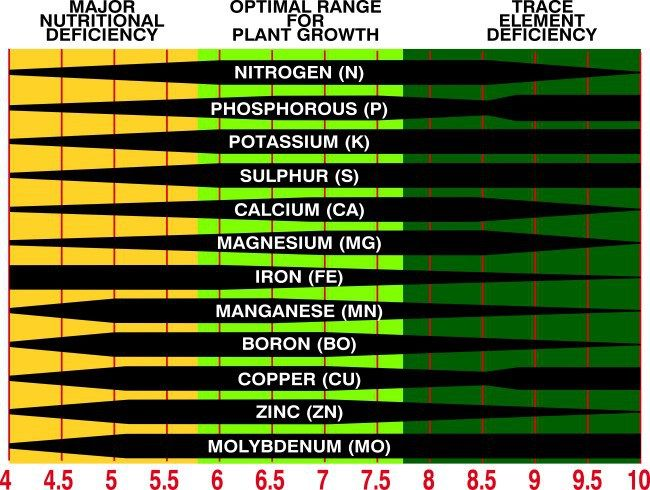 Soil ph chart how your soil 39 s ph affect your plants for Soil ribbon test