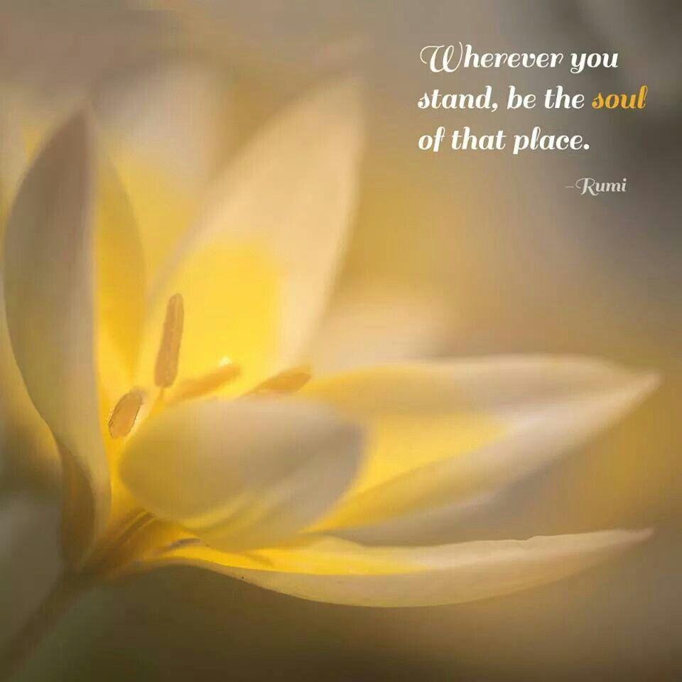 inspiration  Rumi love, Rumi, Rumi quotes