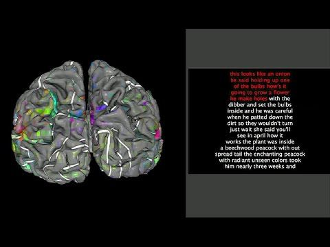 Finding Words In The Brain Trending Labroots Virtual Events