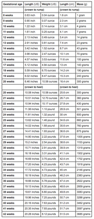 Whoa Baby Bump Baby Weight Chart Fetal Growth Chart Weight Charts
