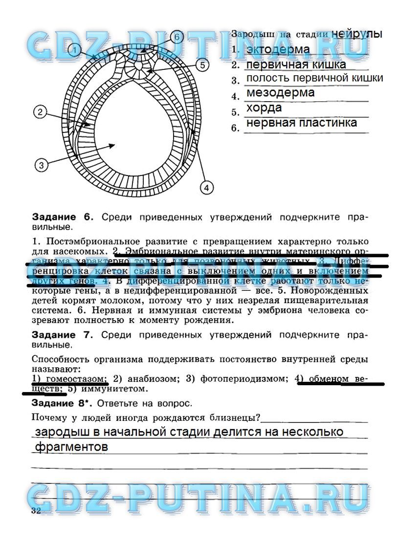 Гдз по русскому языку 6 класс граник готовый домашние задание
