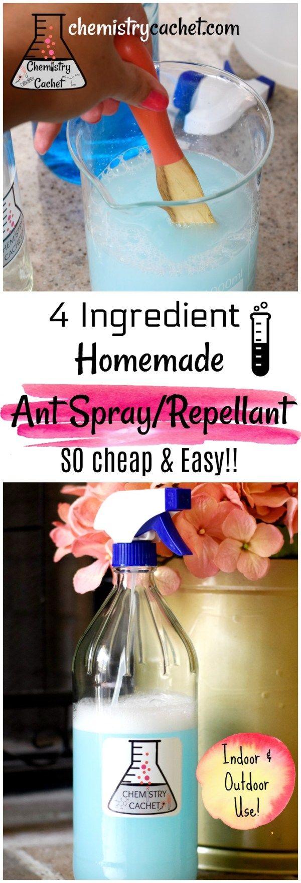 Chemistry Secrets Cheap & Easy Homemade Ant Spray Ant