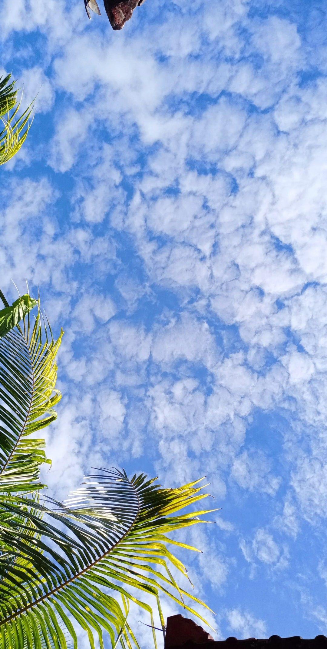 Langit Dan Awan Cantik | Fotografi Langit, Estetika Langit, Langit