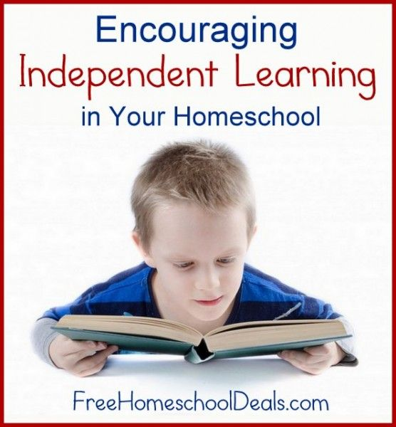 Must Read Homeschool Articles For Encouragement And: Encouraging Independent Learning In Your Homeschool