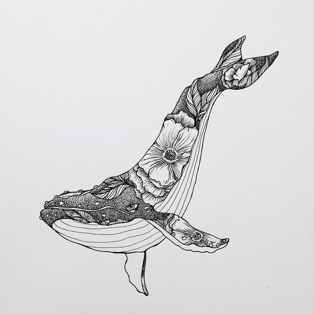 Line Art Ks1 : Drawings by wolfwednesdays art animals birds