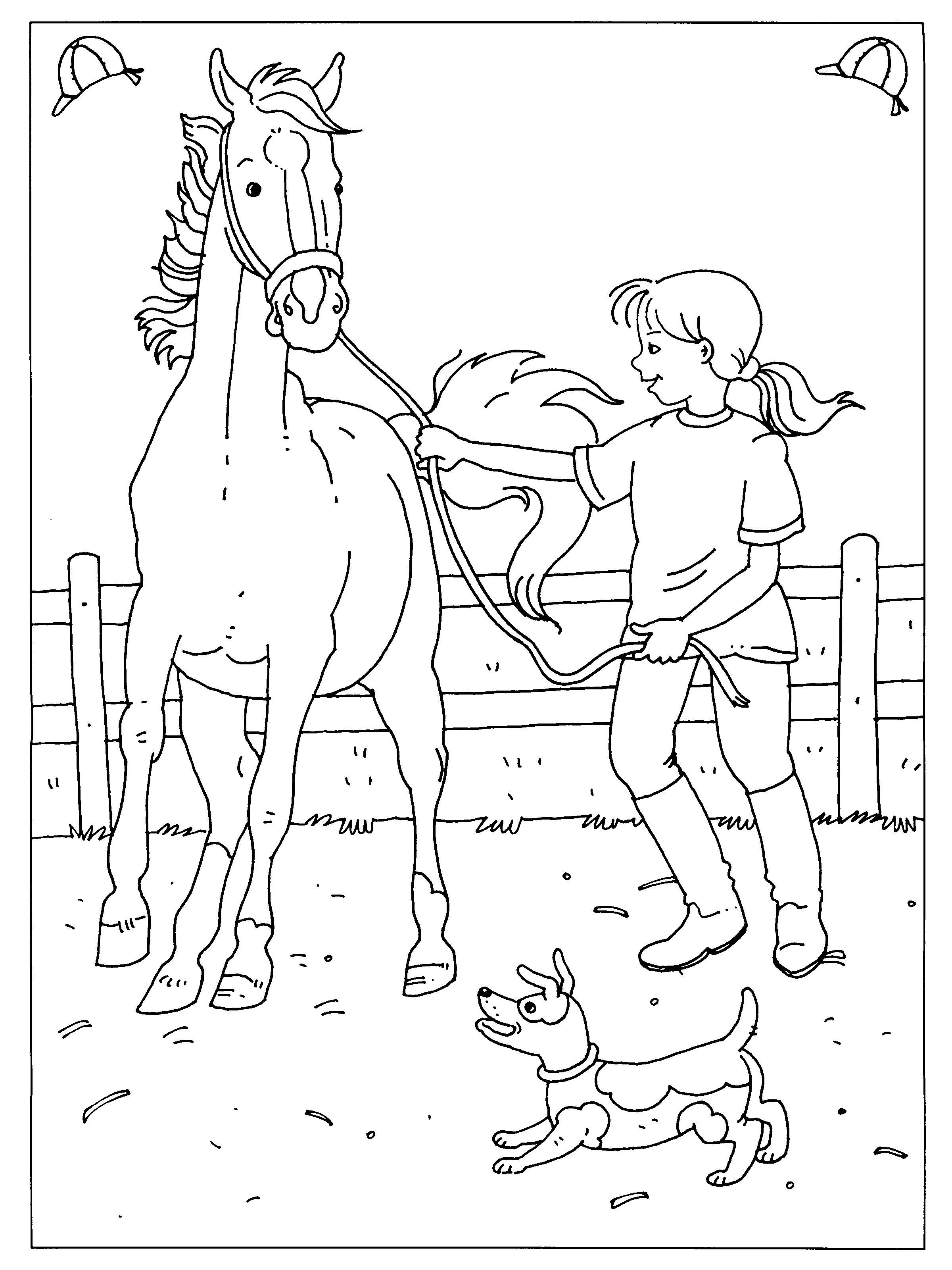 kleurplaat dressuur wedstrijd paard kleurplaten dieren