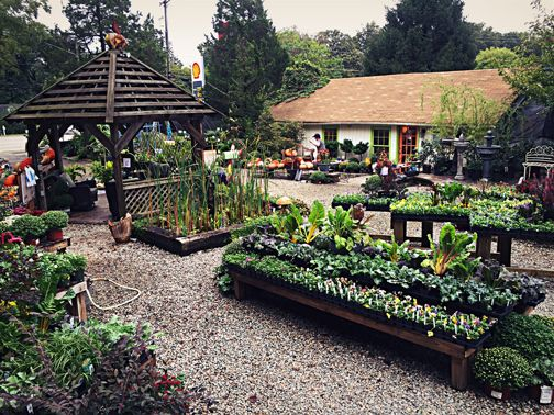 Gca Summer Tour Must See Sneed S Nursery Garden Center With A