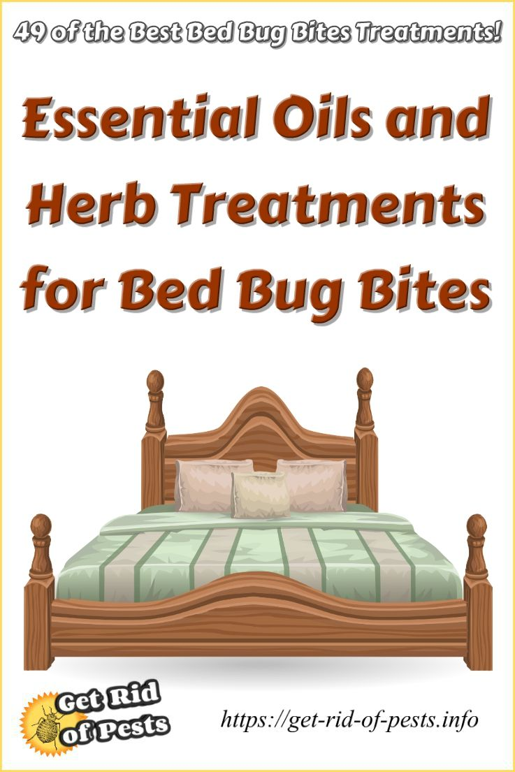 Get Rid Of Bed Bugs Do It Yourself Pest Control Bedbugs How To