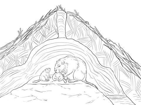 Beaver Lodge Coloring page   Colouring Pages/Coloring Pages   Pinterest