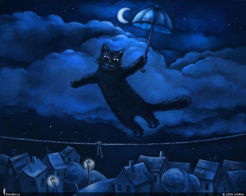 Ночь открытка код, картинки приколом