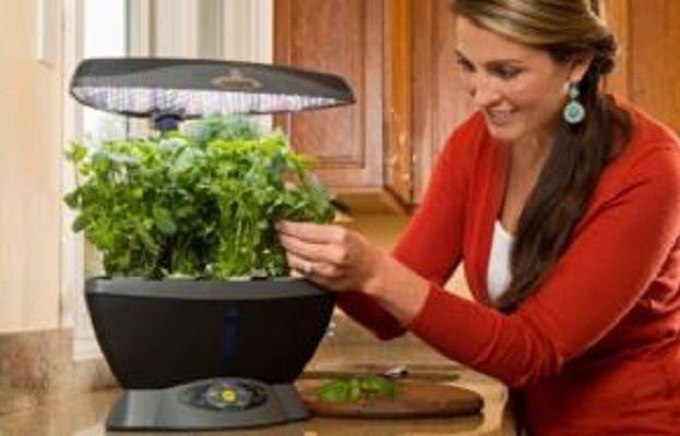 Indoor Year Round Gardening System Kit 6 Pod Sites 20 Watt 400 x 300