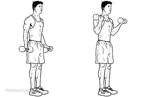 10 Tennis Elbow Exercises To Regain Your Championship Serve Tennis Elbow Exercises Tennis Elbow Elbow Exercises