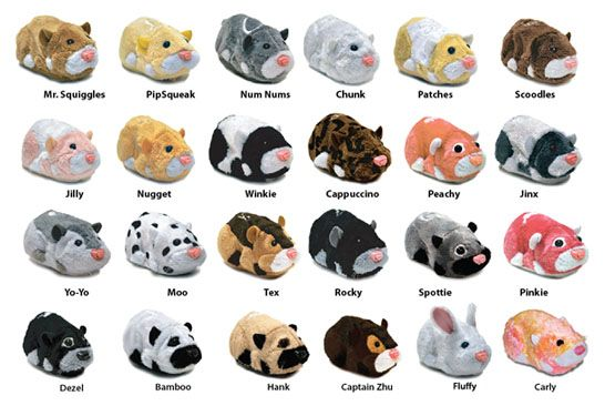 Zhu Zhu Pets Hamsters Where Will Your Zhu Zhu Zhu Oom