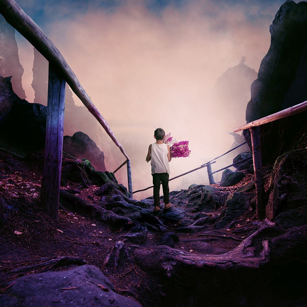 Purple veins by Caras Ionut