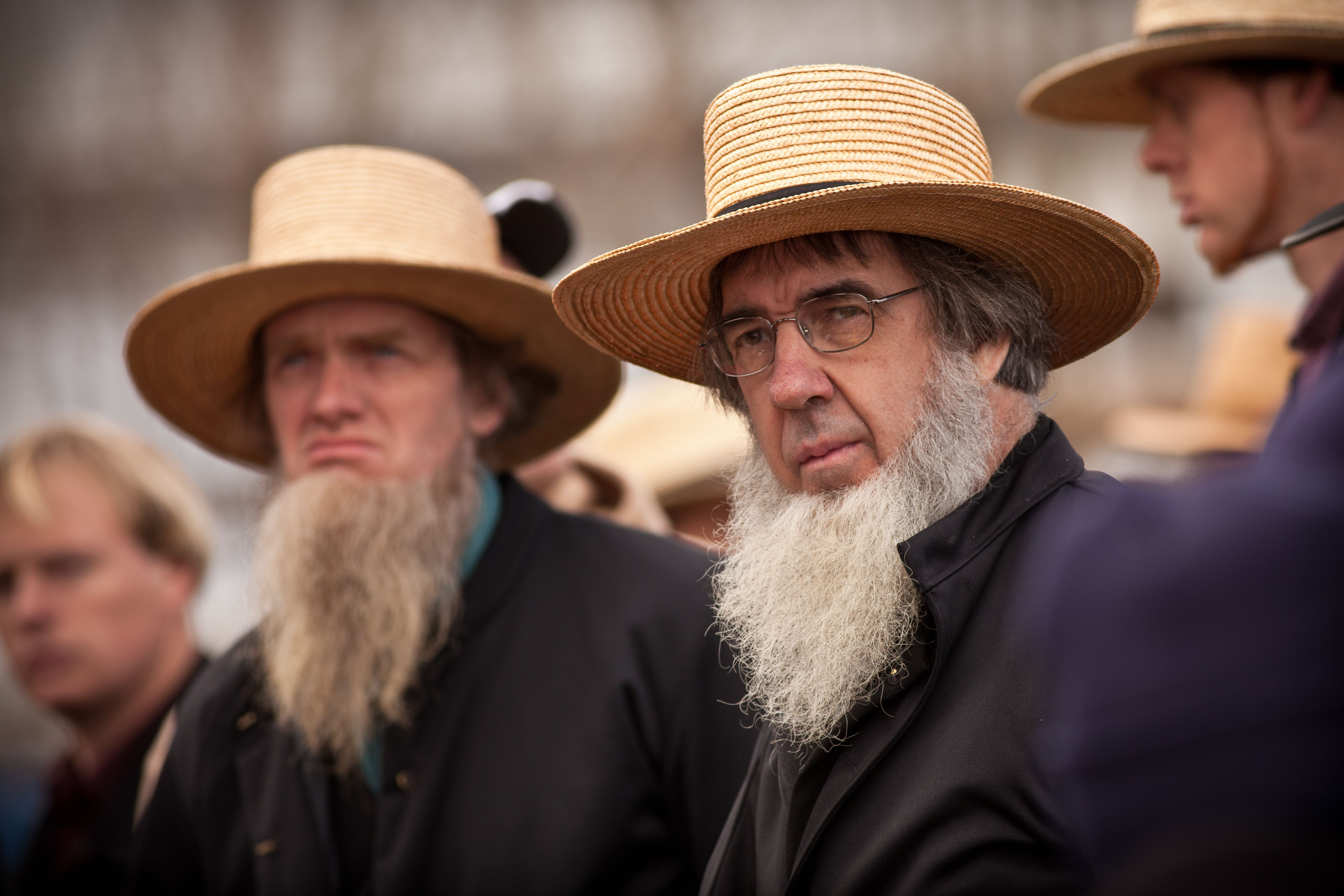 reaction to the amish Hitler's reaction to the tv reality show return to amish that aired july 11, 2016 hitler's reaction to the tv reality show return to amish that aired july 11, 2016.