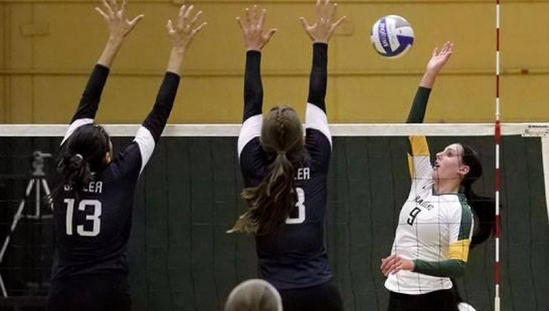 Volleyball Wins In Four Over Chicago State Volleyball Green Bay Athlete