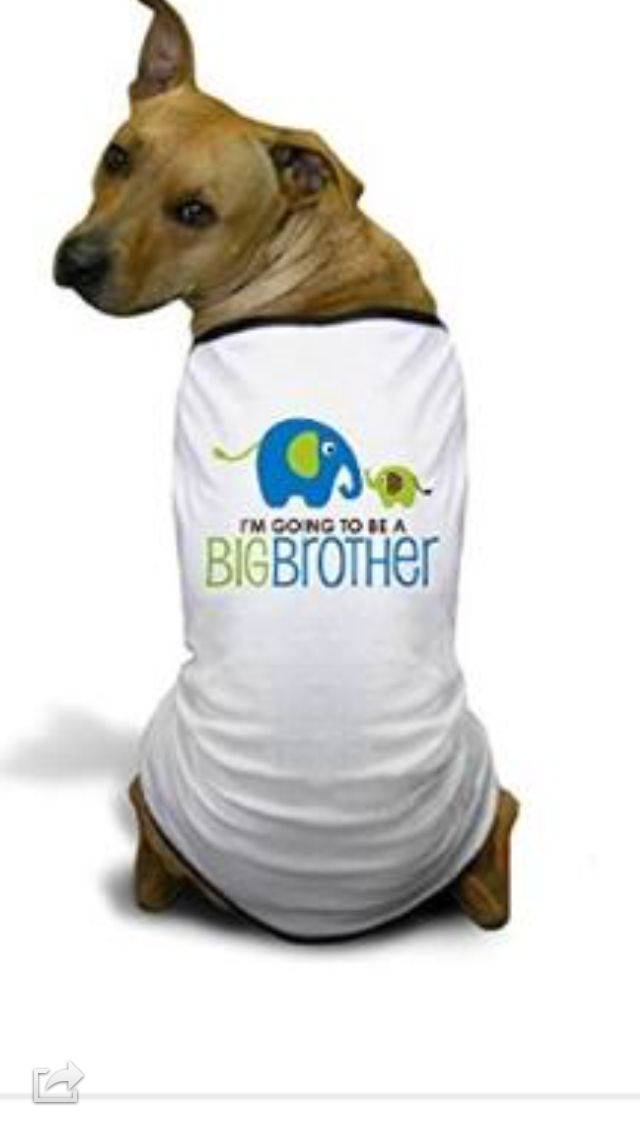 Big brother shirt Baby Announcements – New Jersey Birth Announcements