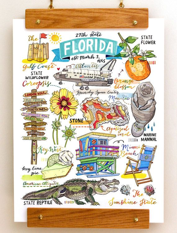 Florida Print State Symbols Illustration State Art Key West