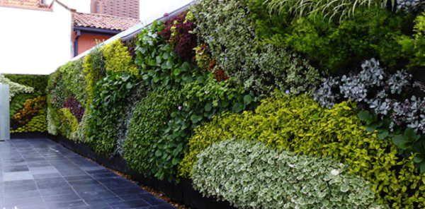 como hacer un jardin vertical CASAS Y OTROS Pinterest