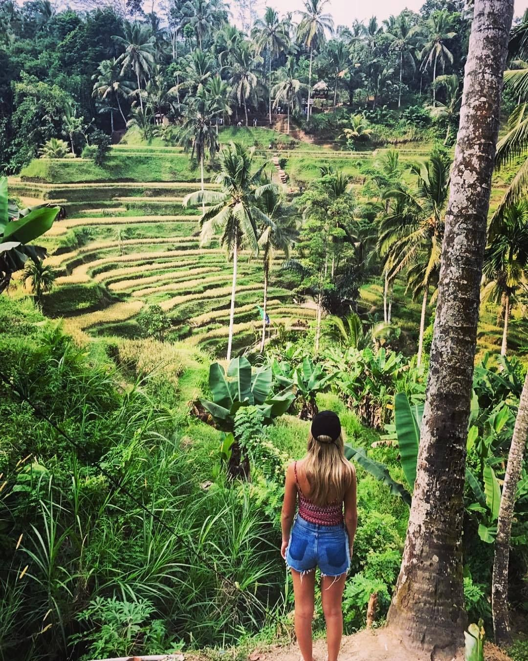 Pin By Tyler Stratton On Concepticism In 2019 Bali Holidays Bali