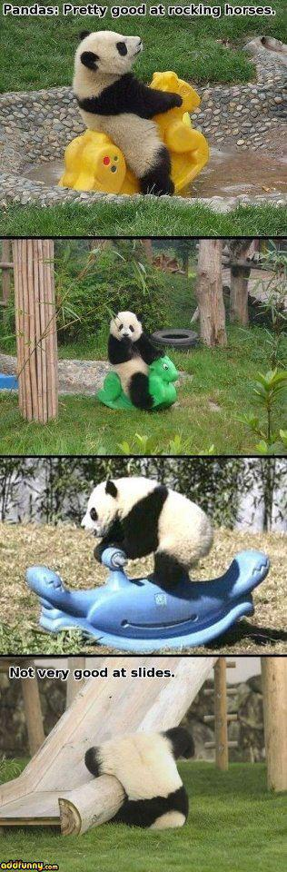 Pandas play with toys too?  I love them even more!