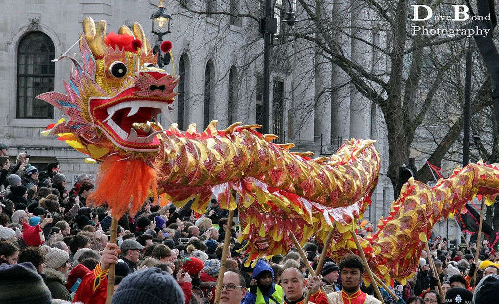 Dragon Chinese new year, New year celebration, Dragon