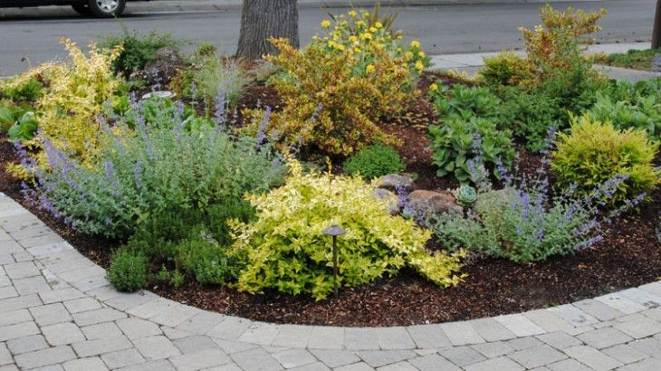 Low Water Landscaping Photos | Low Water High Color Garden Palo Alto Ca  Passionate About Gardening