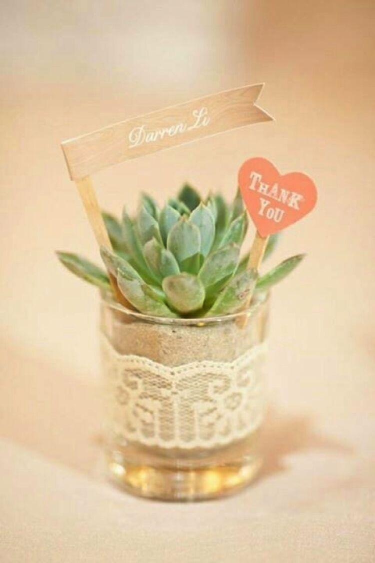 Pin by amandine laurent on mariage aur uc pinterest plants and