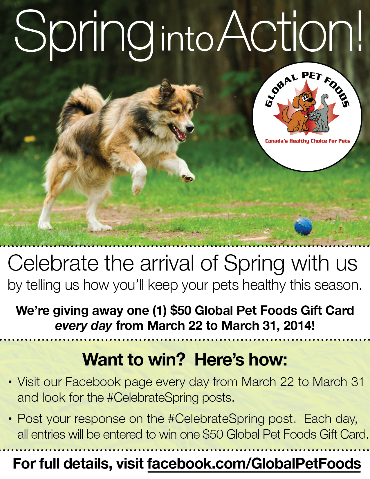 Celebrate Spring With Global Pet Foods We Re Giving Away A 50