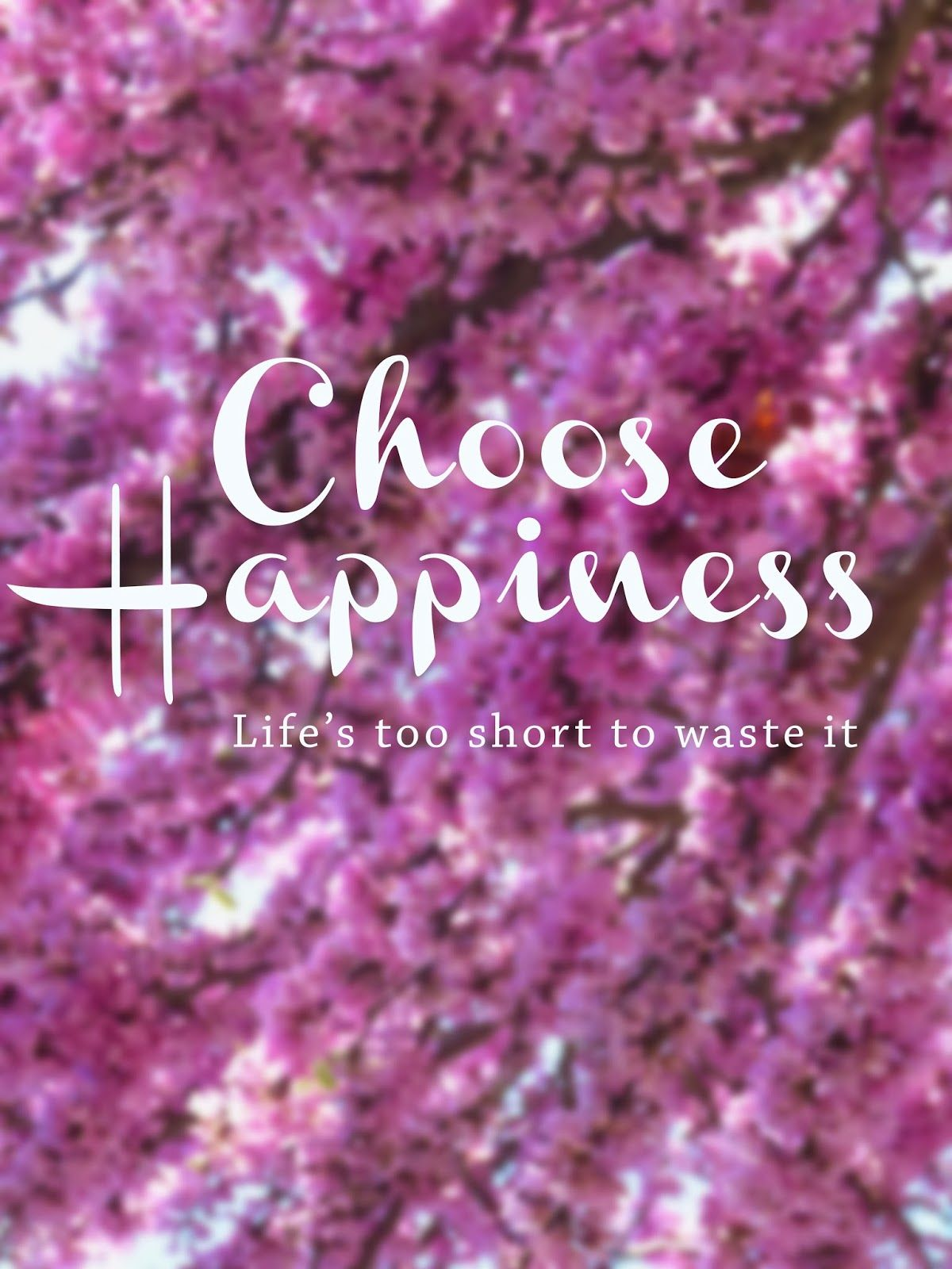 na Companhia do Gato: Quotes: Choose Happiness - life is too short to waste it