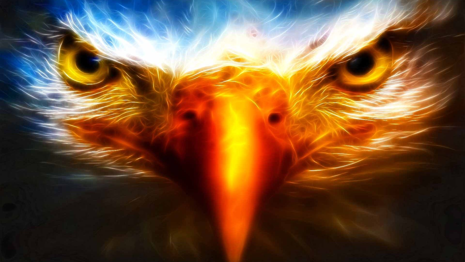 3d Wallpaper Eagle Eyes Widescreen